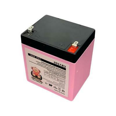 Razor E100 5Ah Replacement Scooter Battery - Pack