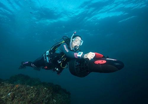 Yamaha RDS300 Camera Mount Recreational Series Underwater