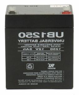 Razor E100 Replacement Battery Set  E125 E150 E175 Crazy Car